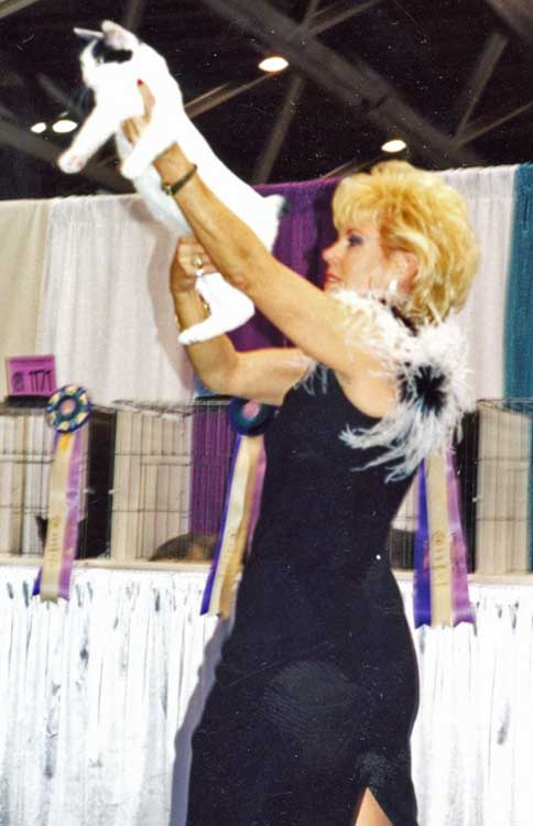 very best Bobtail 1998 international show,Kitty Angel Judge